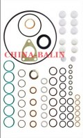 Pump repair kit 2417010008