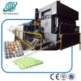 Machine à plateau œuf