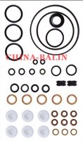 Pump Repair Kits 800636