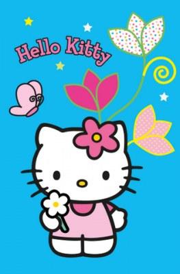 Tapis hello kitty en destockage