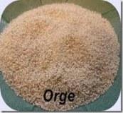 Recherche producteurs de semoule d'orge 100% marocains pour export vers italie