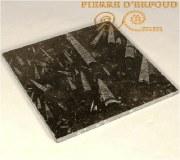 plaque de carrelage e marbre fossilisé