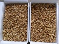 Cerneaux de noix direct usine