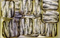 Sardines en conserve Marocains a vendre