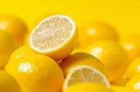 Recherche producteurs agrumes citron marocain pour export vers italie