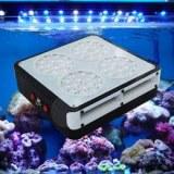 144W LED Aquarium Lumière