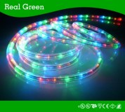 2-Wire Standard Multi RYGB LED Rope Light