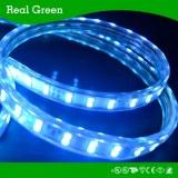 220V 5050 60LEDs/Meter waterproof Flexible SMD LED Strip Light