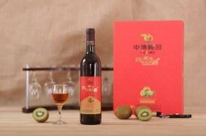 Fête chinoise fruit juteux kiwi jinzhuxia vin 2  750ml 12% ovl avec emballage cadeau
