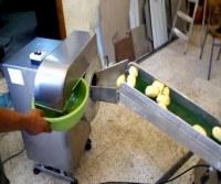 Créez une Unité de Production de Frites Fraîches Sous Vide