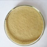 High Temperature Resistant Phytase