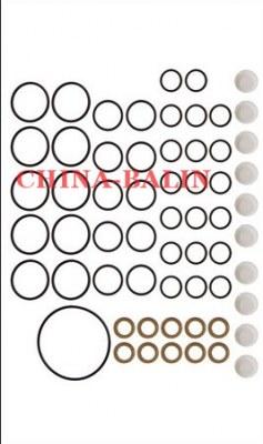 Pump repair kit 800888
