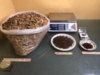 Écorces de racine d'Iboga à vendre, poudre d'Iboga TA à vendre, poudre d'Ibogaïne HCl...