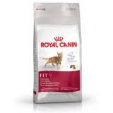 Royal Canin Fit 32 Nourriture sèche pour chat