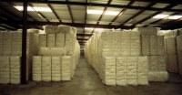Coton naturel brut à vendre
