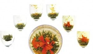 Assorted Blooming Flowering Tea