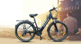 Hot selling electric bike