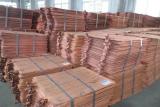 Cathode de cuivre pur à 99,99% à vendre