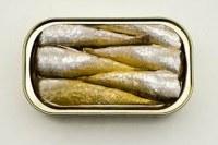 Sardine en conserve