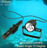 Brinyte under water 200m canister diving flashlight