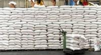 Fournisseur et exportateur de riz