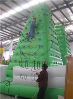 2015 PVC Inflatable Climbing Wall Inflatable on sale !!!