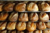 Leader in the production of bread improvers. The company products