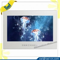 19'' IP66 Waterproof Mirror Built-in Shower TV