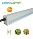 Megaphoton a la lumière de interlighting contre 8 pi de serre poussent les projets d'éclairage