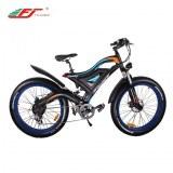 Fat tire mountain electric bike