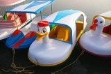 Multi Person Pedal Boat