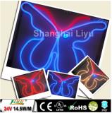 Shanghai liyu led RGB flexible au néon SMD5050 waterproof