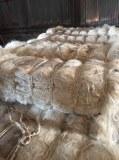 100% naturel Sisal fibre à vendre
