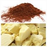 Poudre et beurre de cacao à vendre de côte d'Ivoire à vendre