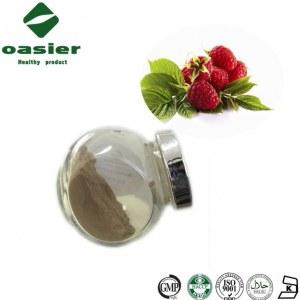 Bulk Raspberry Extract Powder Rubus Idaeus L Raspberry Extract Kentone
