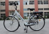 Europe Standard Electric bicycle