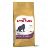Royal Canin British Shorthair Adult, 10kg