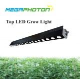 Haut LED Grandir la lumière 200w