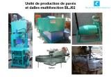 Unité de production de pavés et dalles hydraulique BLJ02
