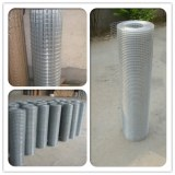 Welded wire mesh,hardware cloth